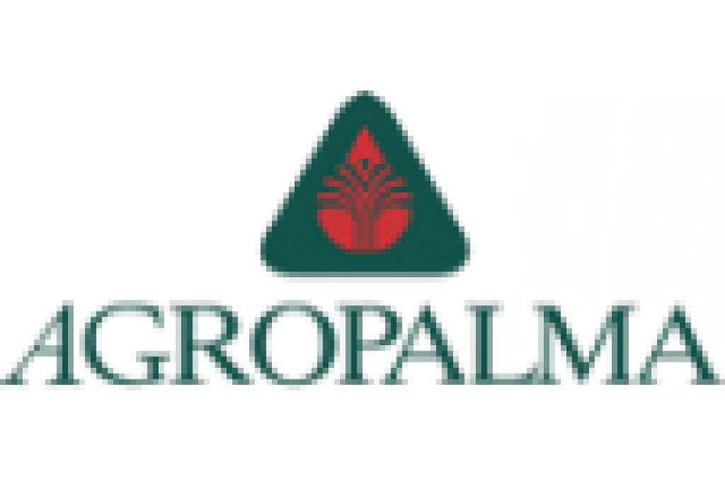 Desenvolvimento e Criação de Sites e Sistemas Web, Logotipo Agropalma