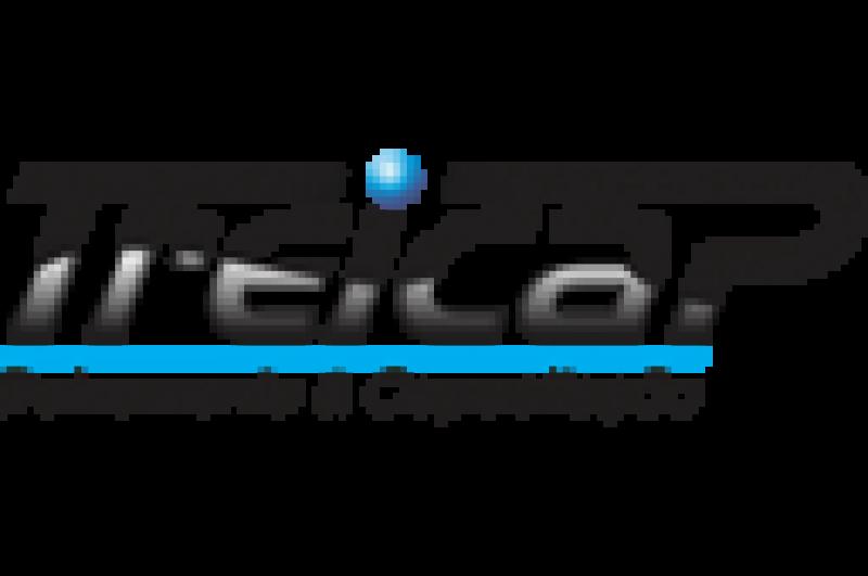 Desenvolvimento e Criação de Sites e Sistemas Web, Logotipo Treicap