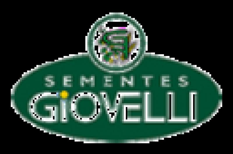 Desenvolvimento e Criação de Sites e Sistemas Web, Logotipo Sementes Giovelli